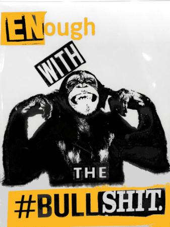PUNK + ROCKER - Enough with bullshit - Wir bringen dich mit unserem Online Marketing u.v.m. auf die Bühne und du kannst performen